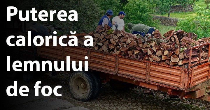 Puterea calorică a lemnului de foc